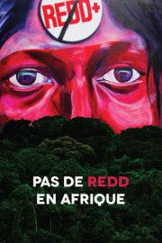 Pas de REDD en Afrique
