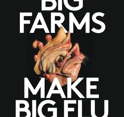 Organising in the time of Covid-19: Big farms make big flu